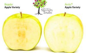 Las manzanas de la discordia