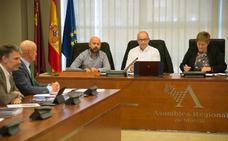 Un experto de La Arrixaca pide en la Asamblea «normalizar» los controles del plomo en sangre entre los vecinos de la Sierra Minera