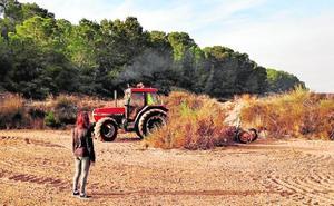 Ayuntamiento de Murcia y Acude unen fuerzas para frenar el desierto