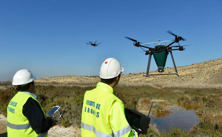 Los drones frenan la eclosión del mosquito tigre en