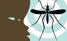 Nueve cosas que debería saber sobre el virus zika
