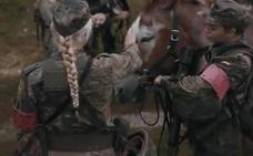 La OTAN elogia en un vídeo el papel de la mula murciana en el Ejército alemán
