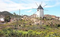 Los molinos de viento renacen