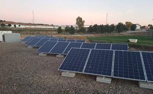La granja veterinaria de la UMU se abastecerá con energía solar