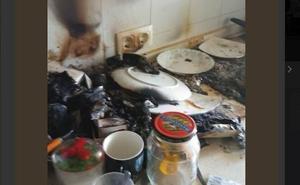 Dos perros provocan un incendio al encender la vitrocerámica cuando no estaban los dueños