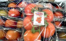 Un 'Brexit' con barreras costaría al sector hortofrutícola 95 millones al año