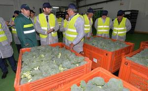 Los cultivos ecológicos ya se extienden por más de 80.000 hectáreas en Murcia