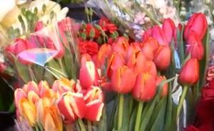 Ballesta invita a los murcianos a llenar de flores los balcones para celebrar la primavera