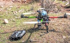 Usan drones por primera vez para tratar de controlar la procesionaria