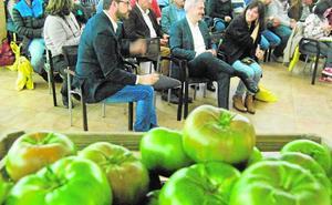 Carbonero, la apuesta de Fitó Semillas para poner en valor el sabor del tomate tradicional