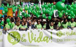 Miles de personas salen a la calle en Madrid para «defender la vida»