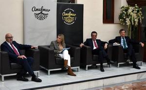 Albarracín solicitará más medidas para «impulsar el desarrollo económico de la Región»