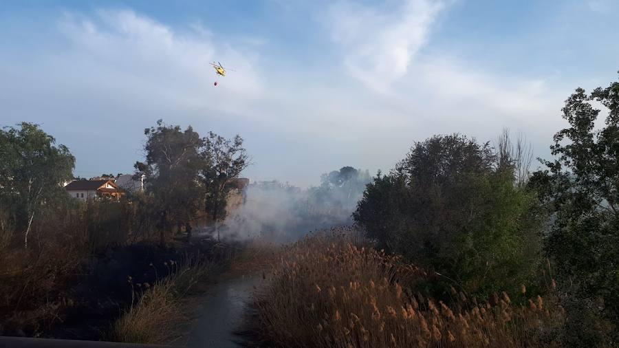 Extinguen un incendio forestal declarado en Archena