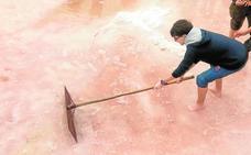 Los estudiantes cosechan su 'salario' en Rambla Salada