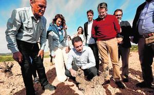 El PP anuncia ayudas fiscales para las empresas que abran en zonas rurales