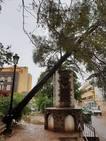 Las fuertes lluvias y los vientos dejan en Jumilla una veintena de incidencias