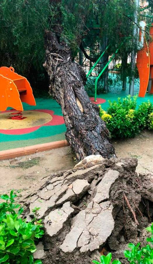 Inundaciones y desprendimientos en Yecla