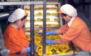 La Región de Murcia cuenta ya con 116.000 trabajadores más que en el punto álgido de la crisis