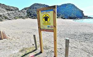 Vinculan la destrucción de flora en Calnegre con el rechazo vecinal al control de acceso a las playas