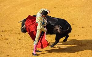 «A mí no me gustan los toros»