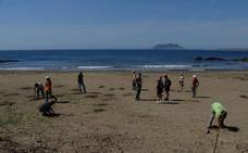 Replantan por segunda vez las playas arrasadas en Calnegre