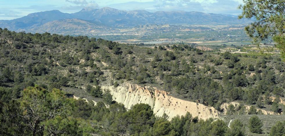 De safari por la sierra de Carrascoy y el Campo de Murcia