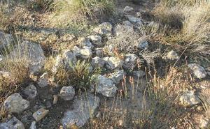 Piden proteger el complejo arqueológico Cañada de Alba en Puerto Lumbreras, «amenazado por una planta fotovoltaica»