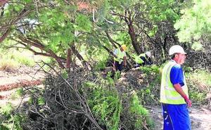 La Confederación Hidrográfica inicia la limpieza del cauce de la rambla de San Roque