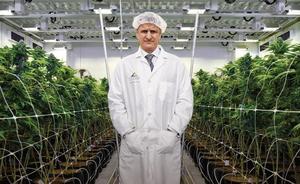 El millonario de la marihuana, que no la prueba