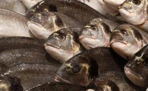 Los 7 pescados que compras en el supermercado sin saber que contienen más mercurio de lo normal