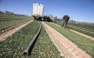 El Ministerio aprueba las restricciones de agua para regar debido a la sequía