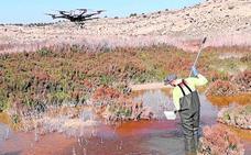 Lokímica, un exponente en controlar las plagas y proteger el medio
