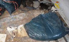 Investigan a una asociación animalista por traficar con perros alojados en una finca en Mazarrón