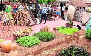 Las tradiciones no envejecen en San Pedro del Pinatar