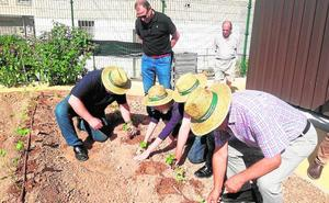Un huerto urbano para los mayores de Molina de Segura