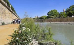 El mal ejemplo de Murcia Río
