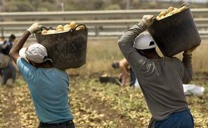 Avalan el despido de un capataz agrícola que utilizaba a empleados en su finca privada