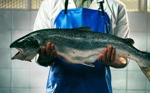 Los 10 pescados más consumidos en España, a examen