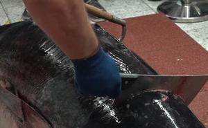 El Corte Inglés de Murcia celebra una demostración de ronqueo del atún rojo