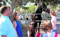 La Feria del Ganado atrae a decenas de visitantes