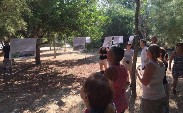 Los maestros trabajan en el Soto de la Hijuela, de Molina, los bioindicadores del agua y la biodiversidad.