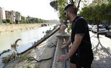 Un tornado generado por el calor provoca la caída de una palmera de 8 metros al río Segura