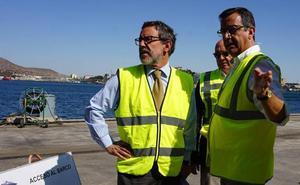 Cartagena se consolida como el principal puerto europeo de exportación de animales vivos