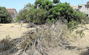 Las sanciones por quemas agrícolas ilegales se cuadruplican para cumplir con la nueva ley