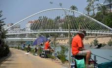 La mota del río estrena un paseo peatonal en su margen derecho
