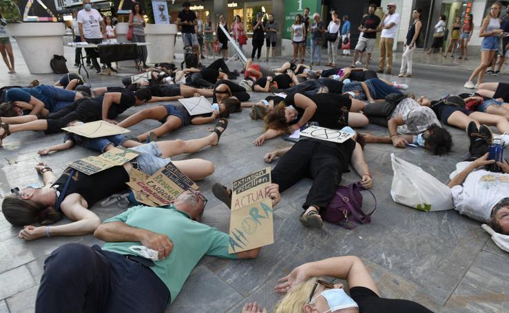 Decenas «adelantan» las consecuencias del cambio climático en Murcia