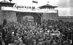 Los 178 murcianos asesinados en Mauthausen