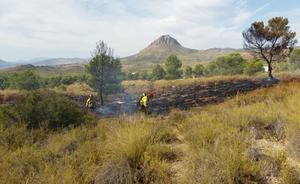 Controlado el incendio forestal ocasionado por un camión en llamas en Cieza