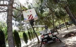 El Ayuntamiento de Murcia pone a punto las zonas verdes de la ciudad antes de la Feria