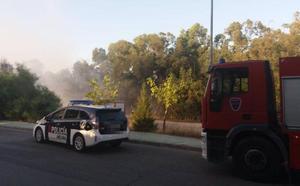 Sofocan un incendio junto a la urbanización molinense Los Conejos
